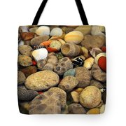 Petoskey Stones With Shells Ll Tote Bag