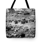 Petrified Forest National Park #2 Tote Bag