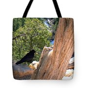 Petrified Raven At Grand Canyon Tote Bag