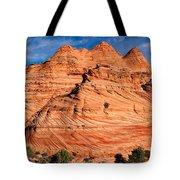 Petrified Sand Dunes Tote Bag