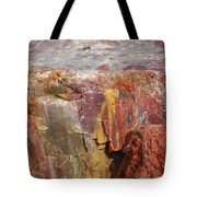 Petrified Wood 2 Tote Bag
