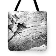 Petrified Wood #5 Tote Bag