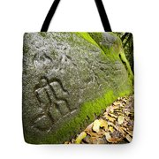 Petroglyphs At An Archaeological Site Tote Bag