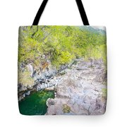 Petrohue River In Vicente Perez Rosales National Park Near Puerto Montt-chile Tote Bag