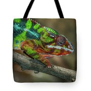 Ambilobe Panther Chameleon Tote Bag