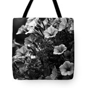 Petunias 1 Black And White Tote Bag