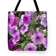 Petunias Tote Bag by Kevin Croitz