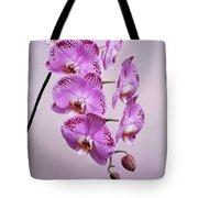 Phalaenopsis Lianher Happy Dancer Tote Bag