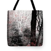 Phantasm In Wildwood Tote Bag
