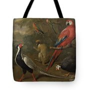 Pheasant Macaw Monkey Parrots And Tortoise  Tote Bag