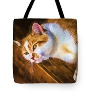 Philipsburg Manor - Barn Cat Nap Tote Bag