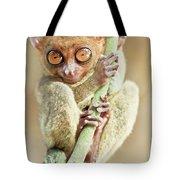 Phillipine Tarsier Tote Bag
