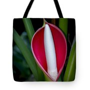 Philodendron Flower Tote Bag