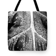 Philodendron Rain - Bw Tote Bag