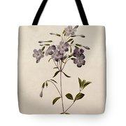 Phlox Reptans Tote Bag