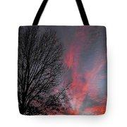 Phoenix Cloud Rising Tote Bag
