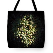 Photo Of Succulents Tote Bag