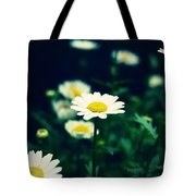 Photo5 Tote Bag