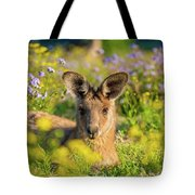 Photogenic Kangaroo Tote Bag
