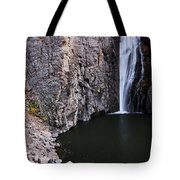 Photographing Porcupine Falls Tote Bag