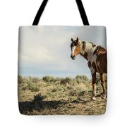 Picasso Looks Over Sand Wash Tote Bag