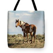 Picasso On The Horizon Tote Bag
