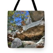 Pickle Spring Sandstone Tote Bag