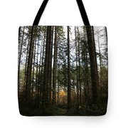 Picnic In The Afternoon Tote Bag