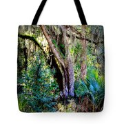 Picnic Time In Florida Tote Bag