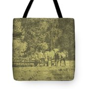 Picture Of Amish Boy In Book Tote Bag