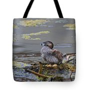 Pied-billed Grebe On Eggs Tote Bag