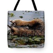 Pied-billed Grebe Spreading Oil Tote Bag