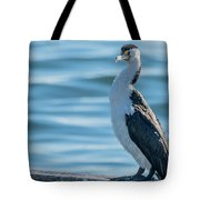 Pied Cormorant On Old Wharf Tote Bag