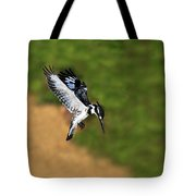 Pied Kingfisher Tote Bag by Tony Beck