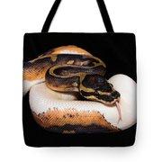 Piedbald Ball Python Tote Bag