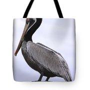 Pier Pelican Ponce Inlet Tote Bag