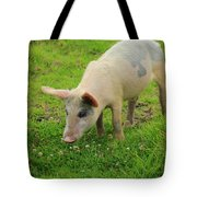 Pig In Wildflowers Tote Bag