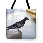 Pigeon By The River Tote Bag