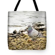 Pigeon Close To The River Tote Bag