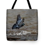 Pigeon Getting Ready To Land Tote Bag