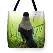 Pigeon With An Attitude Tote Bag