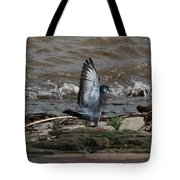 Pigeon With Its Wings Up Tote Bag