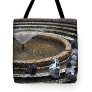 Pigeons Are In The Fountain Refreshes Tote Bag