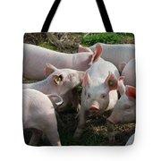 Piglets Tote Bag