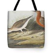 Pigmy Curlew Tote Bag