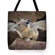Pika - Weminuche Wilderness - Colorado Tote Bag