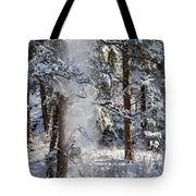 Pike National Forest Snowstorm Tote Bag