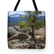 Pikes Peak Bristlecone Tote Bag