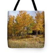 Pikes Peak Splendor Tote Bag