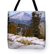 Pikes Peak Winter View Tote Bag
